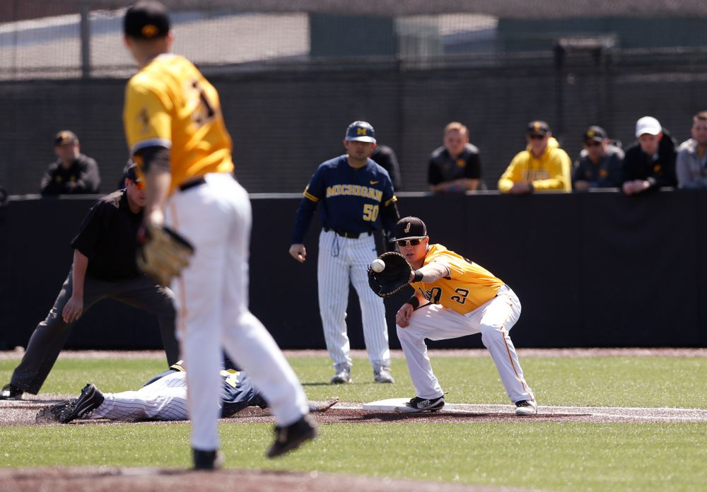 Iowa Hawkeyes catcher Austin Guzzo (20) against the Michigan Wolverines Sunday, April 29, 2018 at Duane Banks Field. (Brian Ray/hawkeyesports.com)