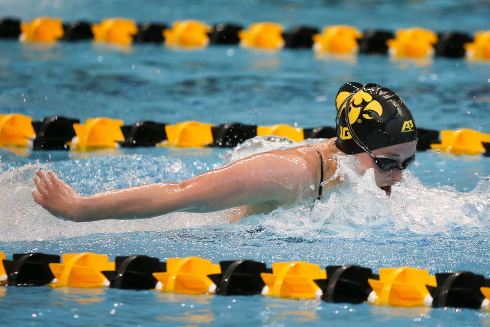 Kelsey Drake during Iowa women's swimming and diving vs Rutgers on Friday, November 8, 2019 at the Campus Wellness and Recreation Center. (Lily Smith/hawkeyesports.com)
