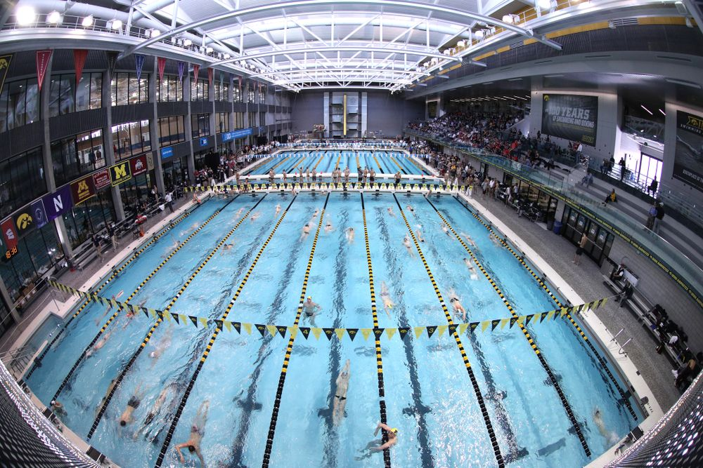 The third day of the 2019 Big Ten Swimming and Diving Championships Thursday, February 28, 2019 at the Campus Wellness and Recreation Center. (Brian Ray/hawkeyesports.com)