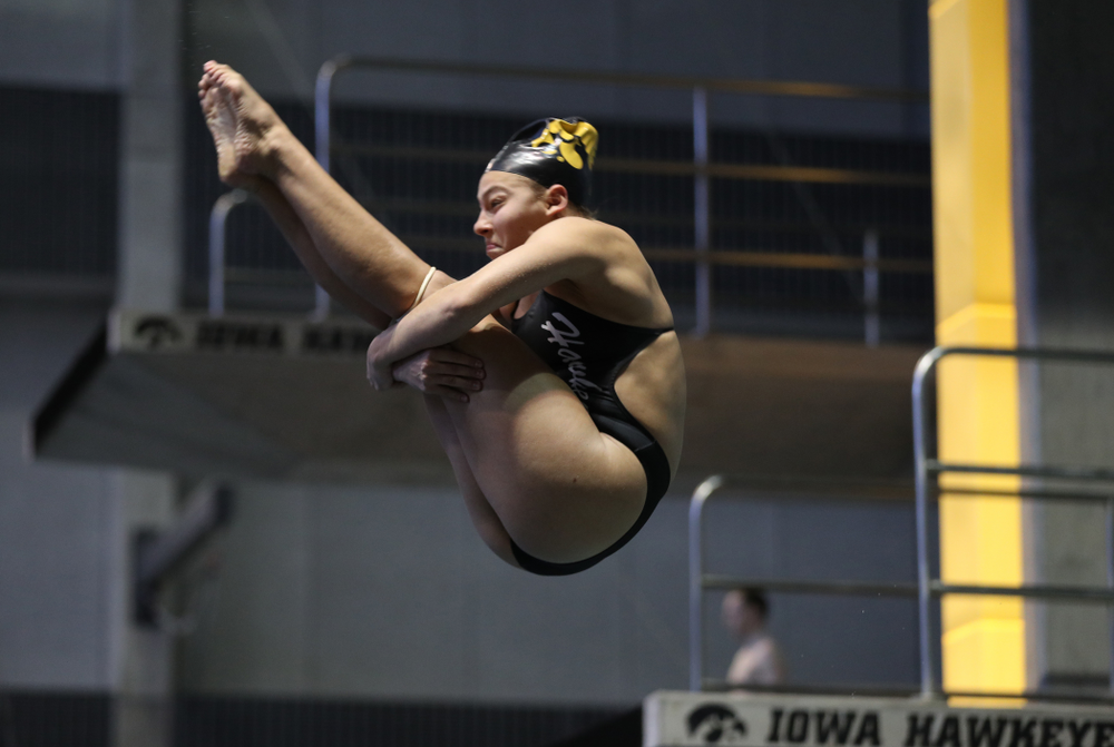 Sam Tamborski competes on the 1 meter board Thursday, November 15, 2018 during the 2018 Hawkeye Invitational at the Campus Recreation and Wellness Center. (Brian Ray/hawkeyesports.com)