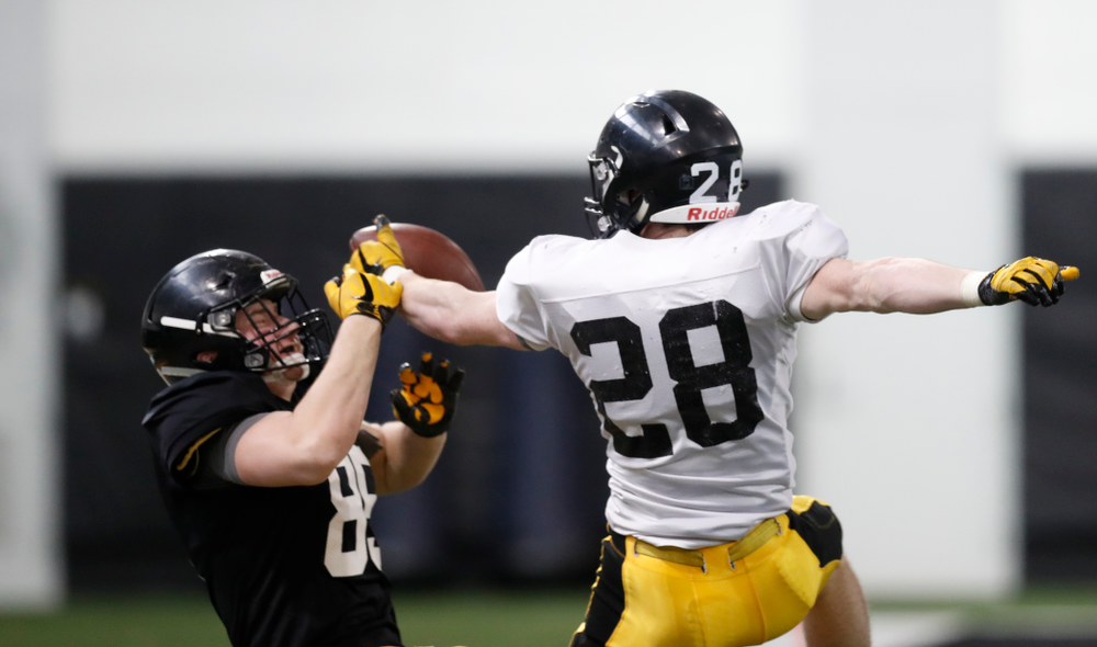 Iowa Hawkeyes tight end Nate Vejvoda (85) and defensive back Jack Koerner (28) during spring practice  Thursday, March 29, 2018 at the Hansen Football Performance Center. (Brian Ray/hawkeyesports.com)