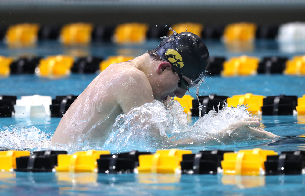 Iowa's Dolan Craine competes in the 200-yard breaststroke during the 2019 Big Ten Men's Swimming and Diving Championships Saturday, March 2, 2019 at the Campus Wellness and Recreation Center. (Brian Ray/hawkeyesports.com)