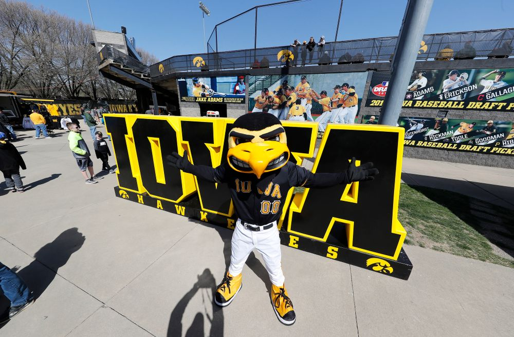 Herky before the Iowa Hawkeyes game against the Michigan Wolverines Sunday, April 29, 2018 at Duane Banks Field. (Brian Ray/hawkeyesports.com)