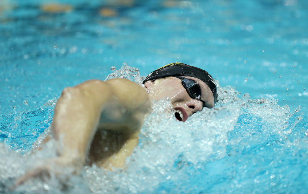 Iowa's Forrest White swims the 500 yard freestyle Thursday, November 15, 2018 during the 2018 Hawkeye Invitational at the Campus Recreation and Wellness Center. (Brian Ray/hawkeyesports.com)