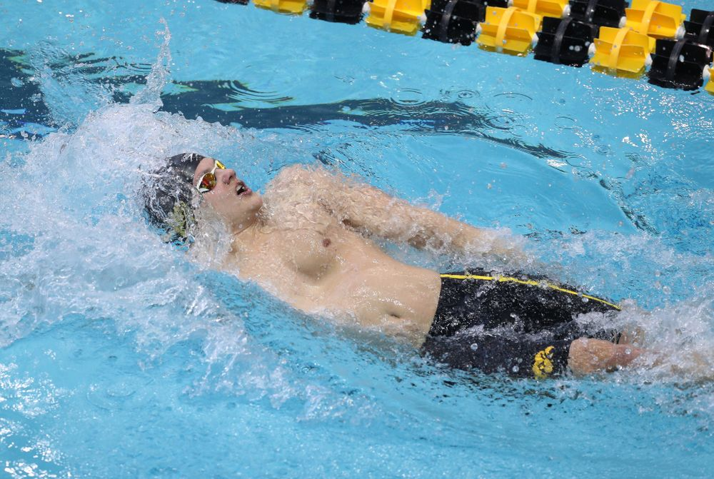 Iowa's Anze Fers Erzen competes in the 200-yard backstroke during the 2019 Big Ten Men's Swimming and Diving Championships Saturday, March 2, 2019 at the Campus Wellness and Recreation Center. (Brian Ray/hawkeyesports.com)