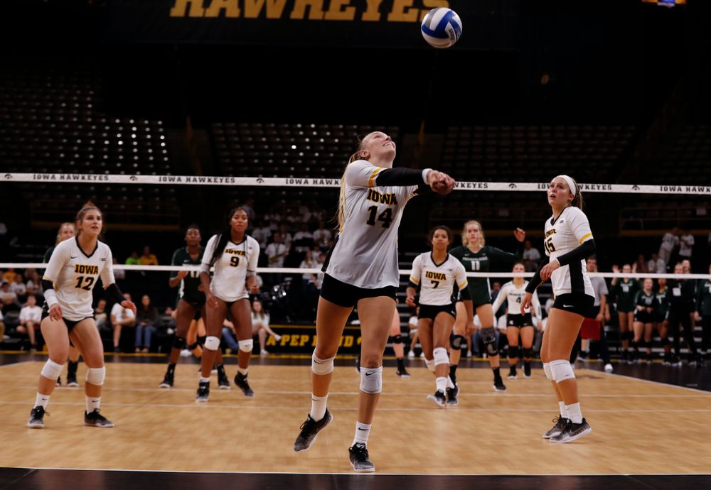 Iowa Hawkeyes outside hitter Cali Hoye (14) against the Michigan State Spartans Friday, September 21, 2018 at Carver-Hawkeye Arena. (Brian Ray/hawkeyesports.com)