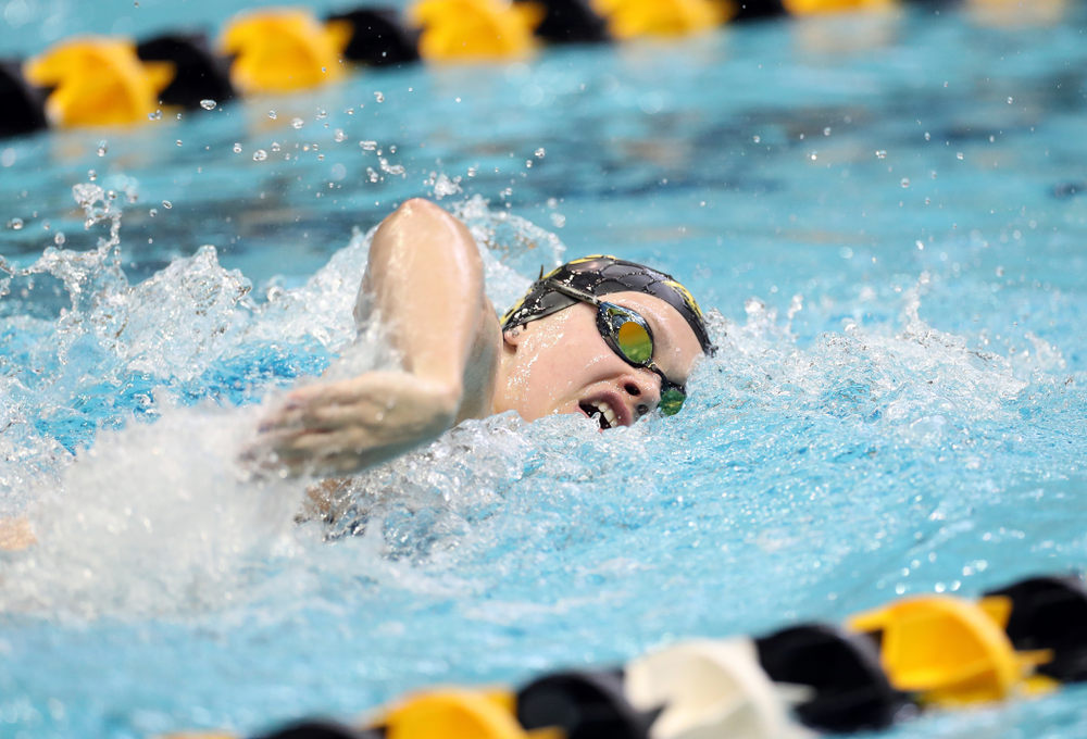IowaÕs Lauren McDougall swims the 200 yard freestyle agains the Michigan Wolverines Friday, November 1, 2019 at the Campus Recreation and Wellness Center. (Brian Ray/hawkeyesports.com)