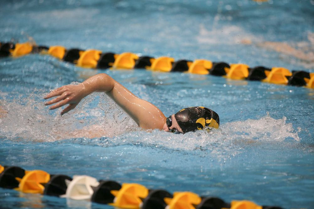 Iowa's Taylor Hartley swims the 500-yard freestyle during the Iowa swimming and diving meet vs Notre Dame and Illinois on Saturday, January 11, 2020 at the Campus Recreation and Wellness Center. (Lily Smith/hawkeyesports.com)