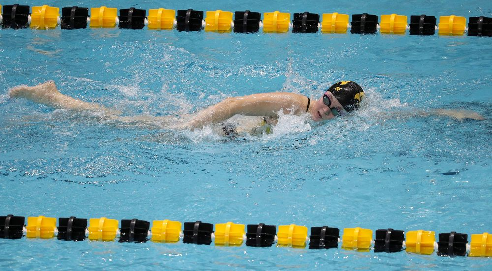 Iowa's Alleyne Thomas competes in the 500-yard freestyle during a meet against Michigan and Denver at the Campus Recreation and Wellness Center on November 3, 2018. (Tork Mason/hawkeyesports.com)