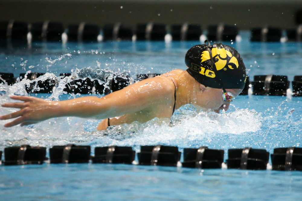 Christina Kaufman during Iowa women's swimming and diving vs Rutgers on Friday, November 8, 2019 at the Campus Wellness and Recreation Center. (Lily Smith/hawkeyesports.com)