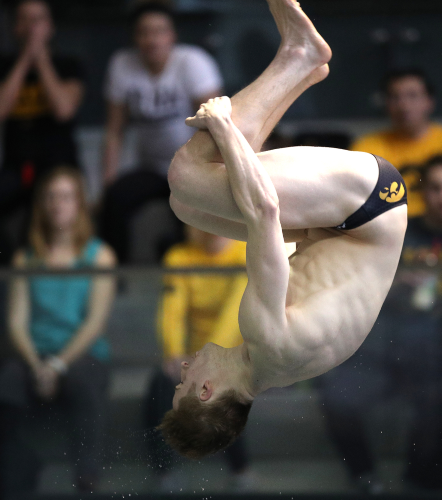 Iowa's Will Brenner competes in the consolation finals of the 1-meter springboard at the 2019 Big Ten Swimming and Diving Championships Thursday, February 28, 2019 at the Campus Wellness and Recreation Center. (Brian Ray/hawkeyesports.com)