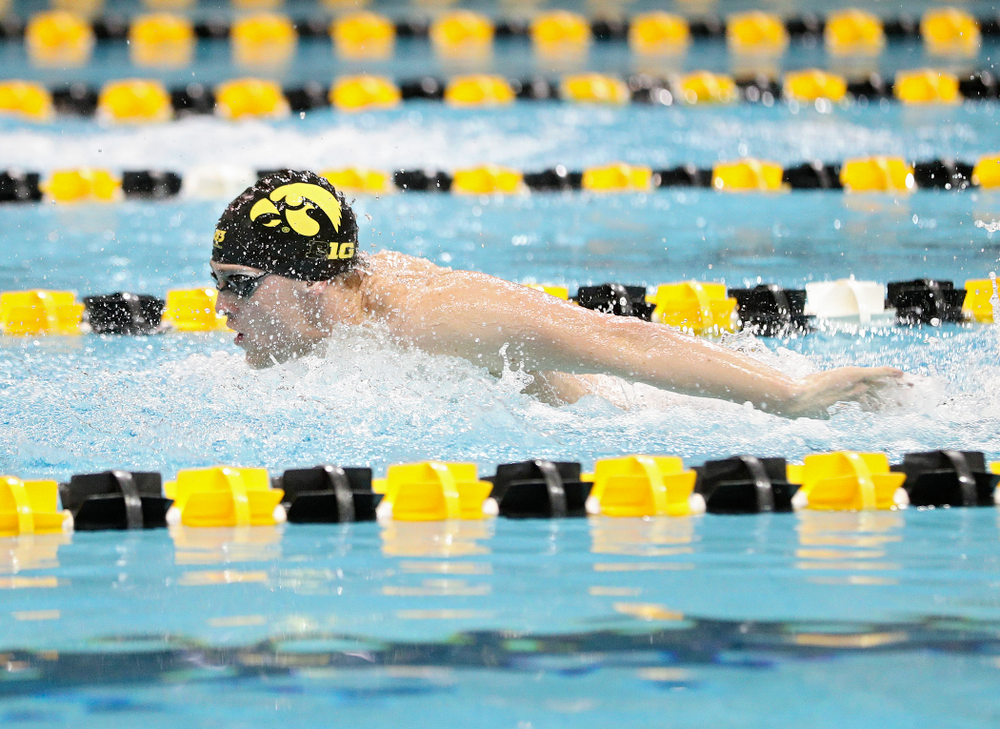 Iowa's Caleb Babb swims the butterfly section in the men's 400 yard medley relay event during their meet at the Campus Recreation and Wellness Center in Iowa City on Friday, February 7, 2020. (Stephen Mally/hawkeyesports.com)