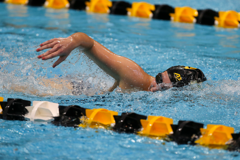 Iowa's Taylor Hartley during Iowa swim and dive vs Minnesota on Saturday, October 26, 2019 at the Campus Wellness and Recreation Center. (Lily Smith/hawkeyesports.com)