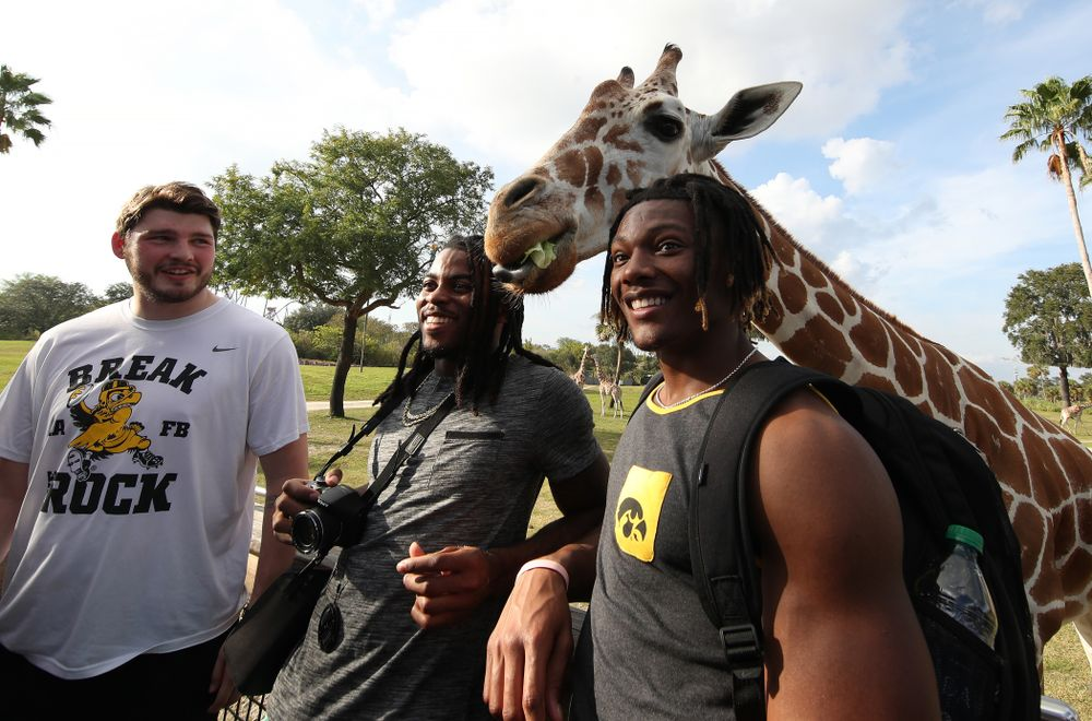 Iowa Hawkeyes wide receiver Brandon Smith (12) and Iowa Hawkeyes defensive back Devonte Young (17) take a photo with a giraffe during an Outback Bowl team event Saturday, December 29, 2018 at Busch Gardens in Tampa, FL. (Brian Ray/hawkeyesports.com)