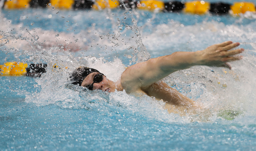 Iowa's Ben Colin competes in the 100-yard freestyle during the third day of the Hawkeye Invitational at the Campus Recreation and Wellness Center on November 17, 2018. (Tork Mason/hawkeyesports.com)
