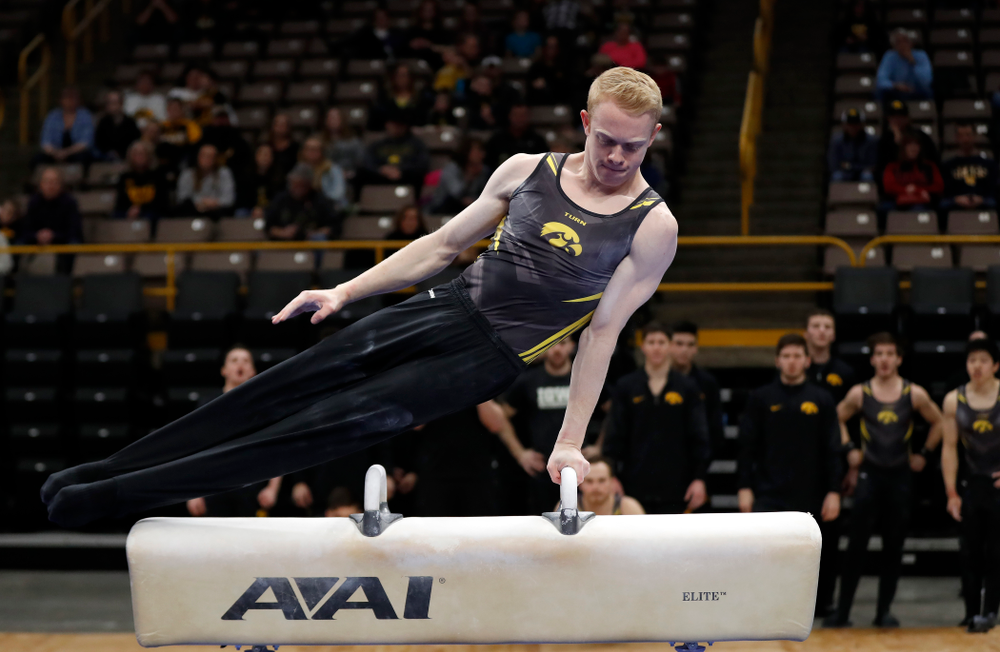 Nick Merryman competes on the pommel horse  against Minnesota and Air Force