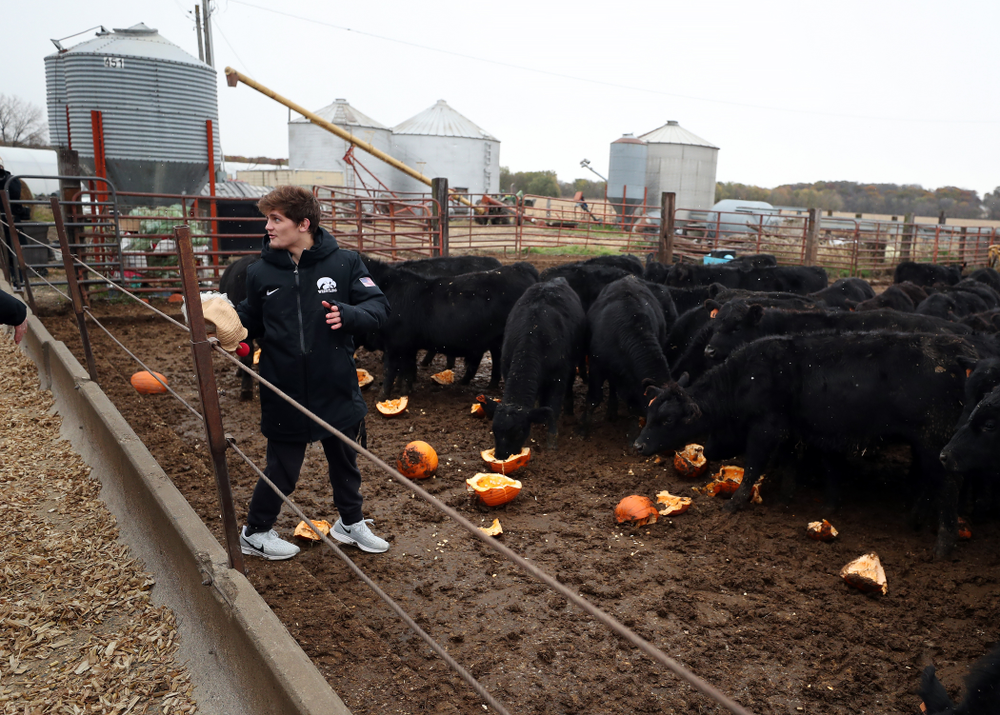 Wrestler Gavin Teasdale climbs into the cow pen during the teamÕs annual media day Wednesday, October 30, 2019 at Kroul Family Farms in Mount Vernon. (Brian Ray/hawkeyesports.com)