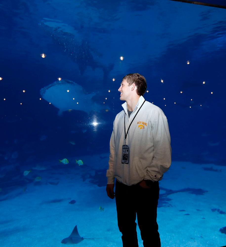 T.J. Hockenson enjoys a view at the Georgia Aquarium.