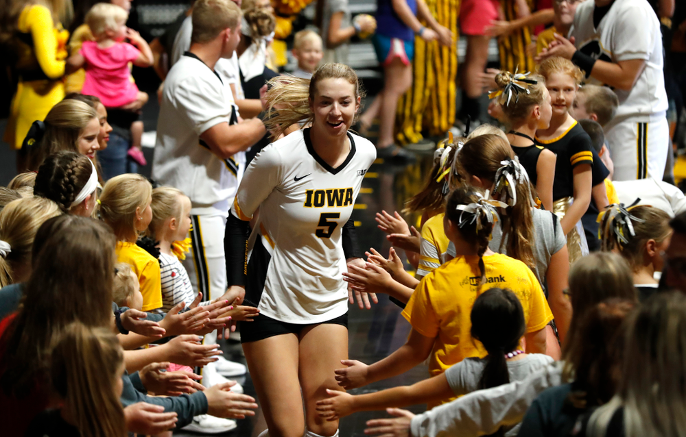 Iowa Hawkeyes outside hitter Meghan Buzzerio (5) against the Michigan Wolverines Sunday, September 23, 2018 at Carver-Hawkeye Arena. (Brian Ray/hawkeyesports.com)