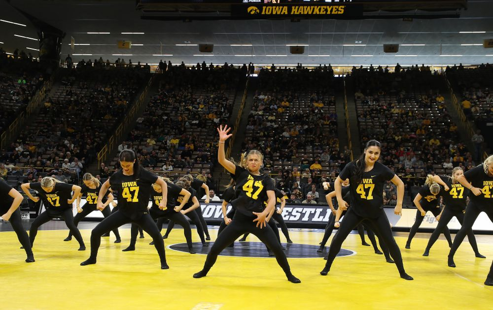 The Iowa Dance Team performs at the intermission of the Iowa Hawkeyes match against Purdue Saturday, November 24, 2018 at Carver-Hawkeye Arena. (Brian Ray/hawkeyesports.com)