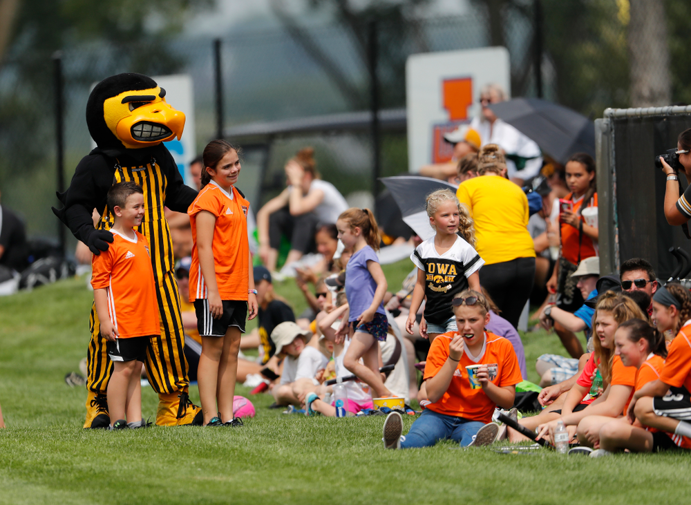 Herky the Hawk against the Creighton Bluejays  Sunday, August 19, 2018 at the Iowa Soccer Complex. (Brian Ray/hawkeyesports.com)
