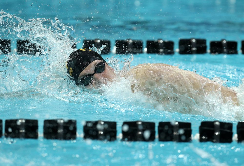 Iowa's Ben Colin swims the 500 yard freestyle Thursday, November 15, 2018 during the 2018 Hawkeye Invitational at the Campus Recreation and Wellness Center. (Brian Ray/hawkeyesports.com)