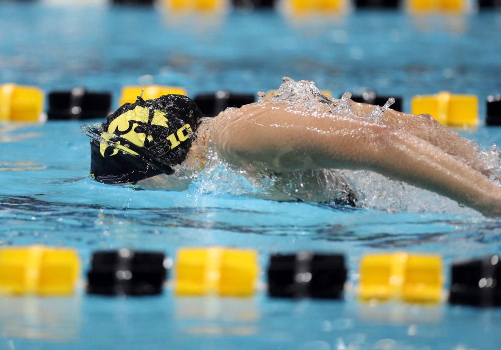 IowaÕs Christina Kaufman swims the 100 yard butterfly against the Michigan Wolverines Friday, November 1, 2019 at the Campus Recreation and Wellness Center. (Brian Ray/hawkeyesports.com)