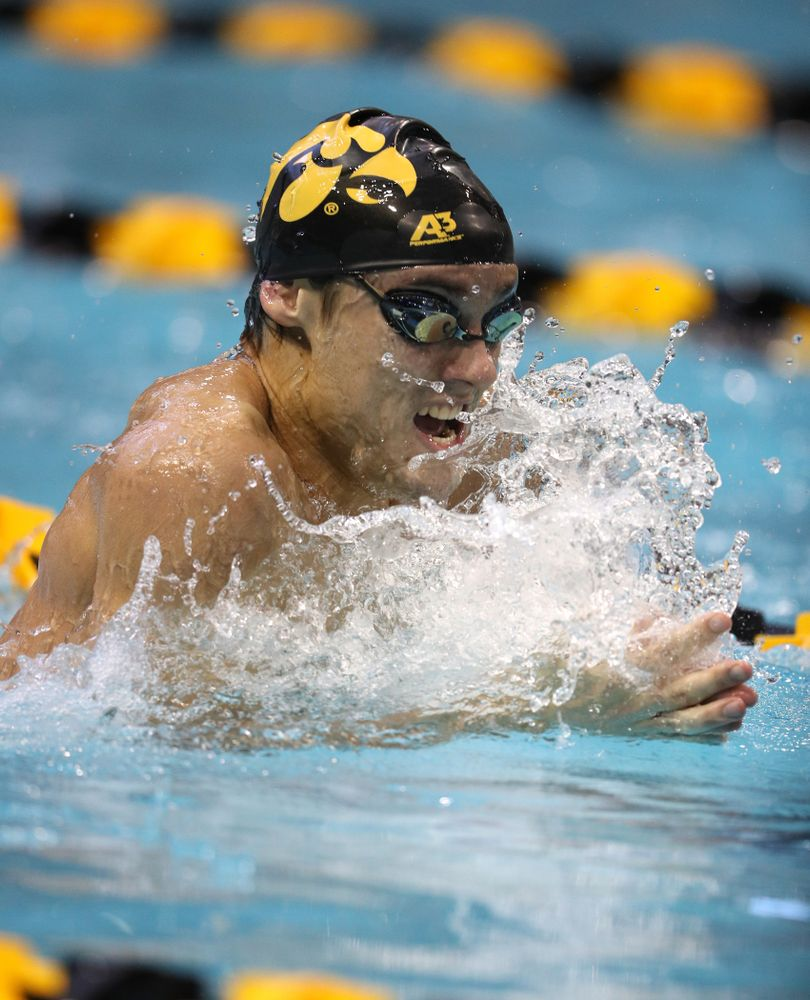 Iowa's Daniel Swanepoel swims the 100 yard breaststroke during a double dual against Wisconsin and Northwestern Saturday, January 19, 2019 at the Campus Recreation and Wellness Center. (Brian Ray/hawkeyesports.com)