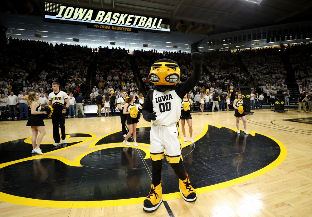 Herky The Hawk against the Illinois Fighting Illini Sunday, February 2, 2020 at Carver-Hawkeye Arena. (Brian Ray/hawkeyesports.com)