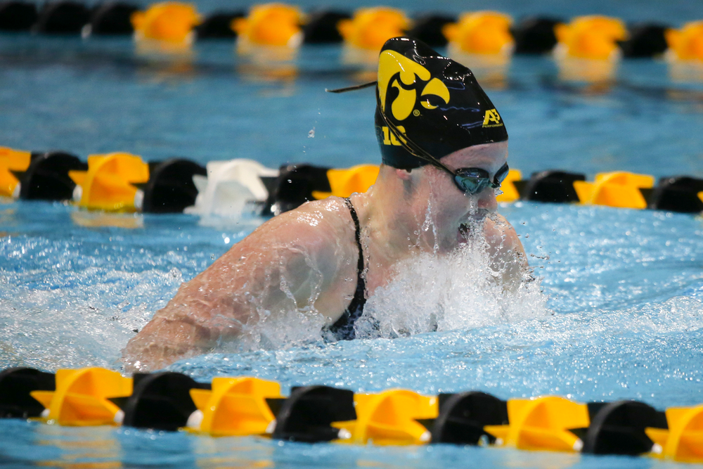 Julia Koluch during Iowa women's swimming and diving vs Rutgers on Friday, November 8, 2019 at the Campus Wellness and Recreation Center. (Lily Smith/hawkeyesports.com)