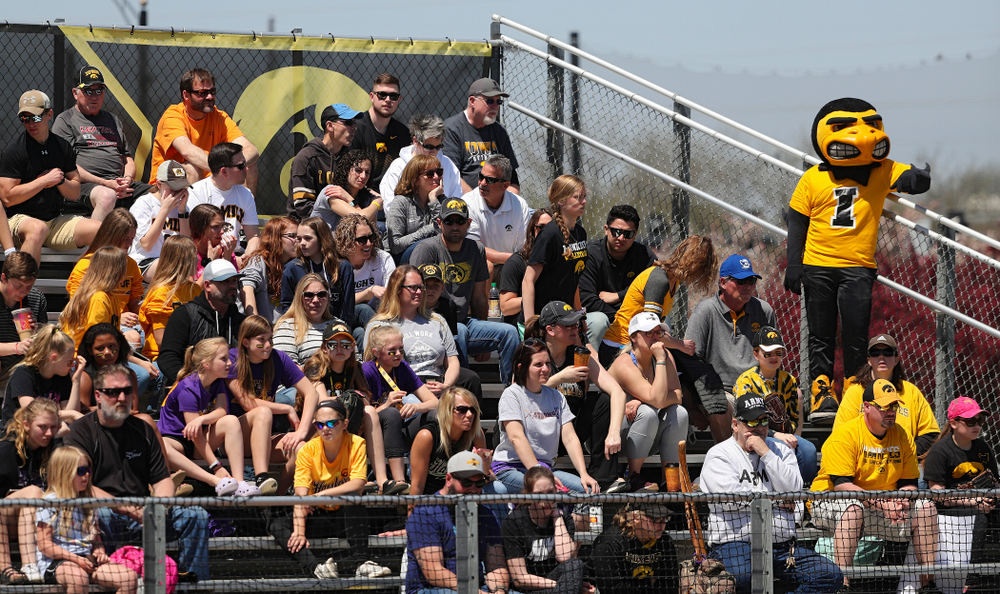 Herky stands along the third base line during the first inning of their game against Ohio State at Pearl Field in Iowa City on Saturday, May. 4, 2019. (Stephen Mally/hawkeyesports.com)