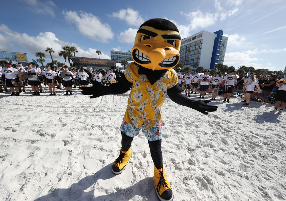 Herky The Hawk during the Outback Bowl Beach Day Sunday, December 30, 2018 at Clearwater Beach. (Brian Ray/hawkeyesports.com)