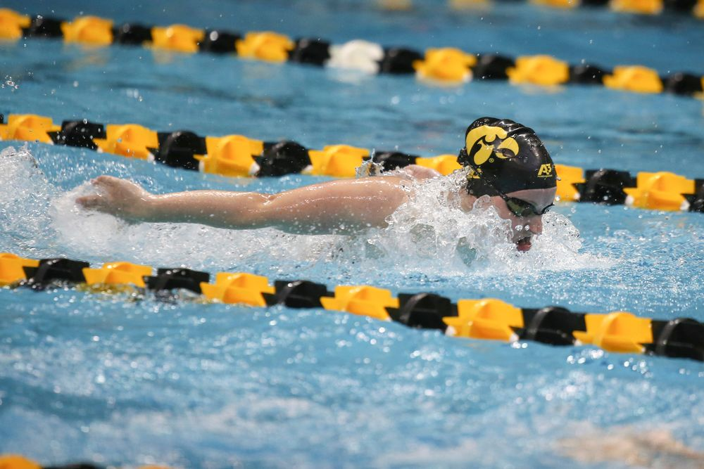 Iowa's Amy Lenderink swims the 200-yard butterfly during the Iowa swimming and diving meet vs Notre Dame and Illinois on Saturday, January 11, 2020 at the Campus Recreation and Wellness Center. (Lily Smith/hawkeyesports.com)