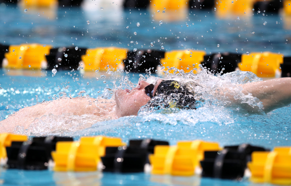 Iowa's Kenneth Mende swims in the preliminaries of the 200-yard IM during the 2019 Big Ten Swimming and Diving Championships Thursday, February 28, 2019 at the Campus Wellness and Recreation Center. (Brian Ray/hawkeyesports.com)