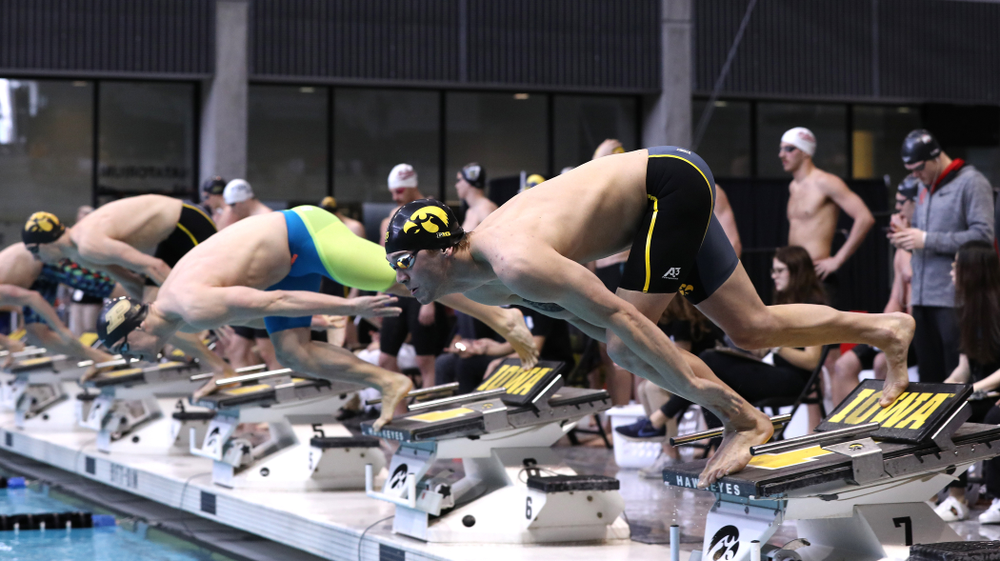 Iowa's Stjepan Fiolic competes in the 100-yard freestyle during the 2019 Big Ten Men's Swimming and Diving Championships Saturday, March 2, 2019 at the Campus Wellness and Recreation Center. (Brian Ray/hawkeyesports.com)