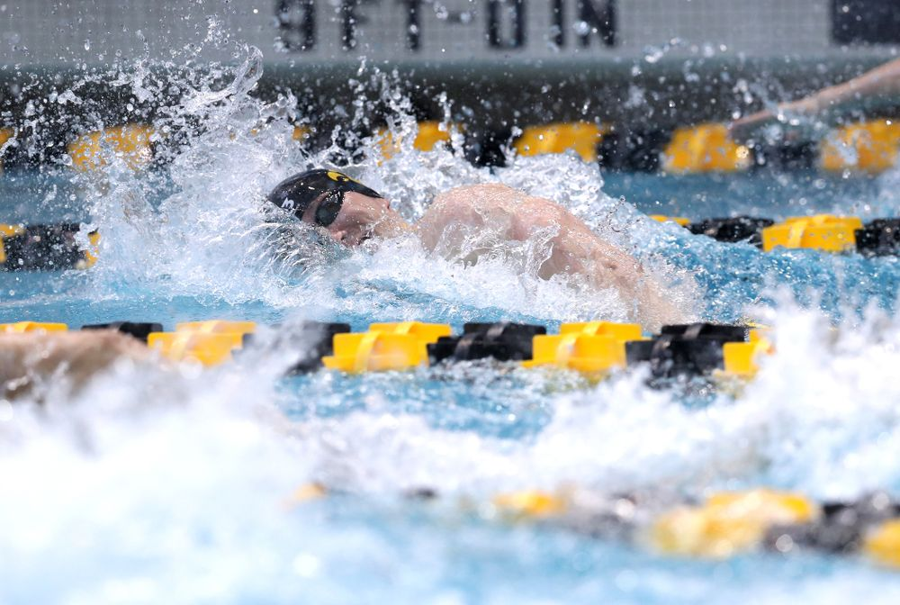 Iowa's Michal Brzus competes in the 100-yard freestyle during the 2019 Big Ten Men's Swimming and Diving Championships Saturday, March 2, 2019 at the Campus Wellness and Recreation Center. (Brian Ray/hawkeyesports.com)
