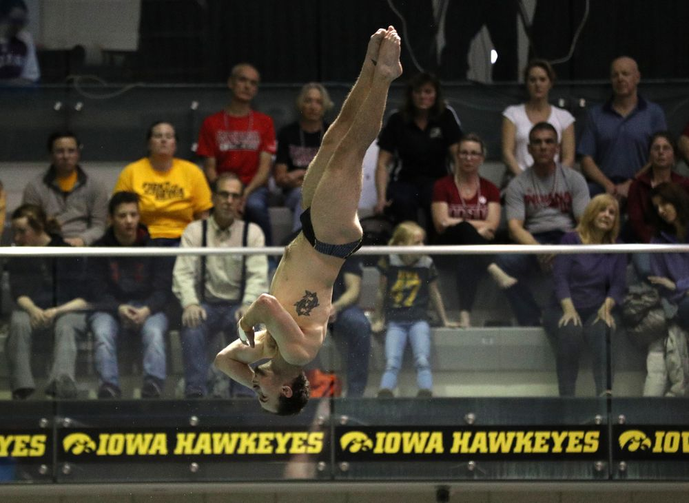 Iowa's Anton Hoherz competes in the finals on the 1-meter springboard on the second day at the 2019 Big Ten Swimming and Diving Championships Thursday, February 28, 2019 at the Campus Wellness and Recreation Center. (Brian Ray/hawkeyesports.com)
