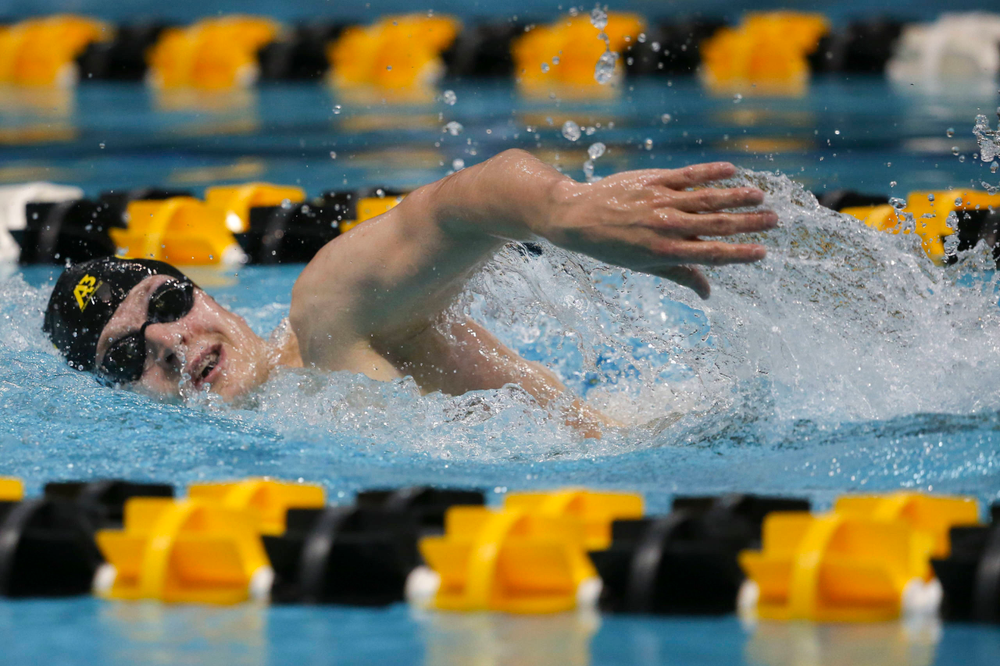 Iowa's B team at the 1,650-yard freestyle race  Saturday, March 2, 2019 at the Campus Recreation and Wellness Center. (Lily Smith/hawkeyesports.com)