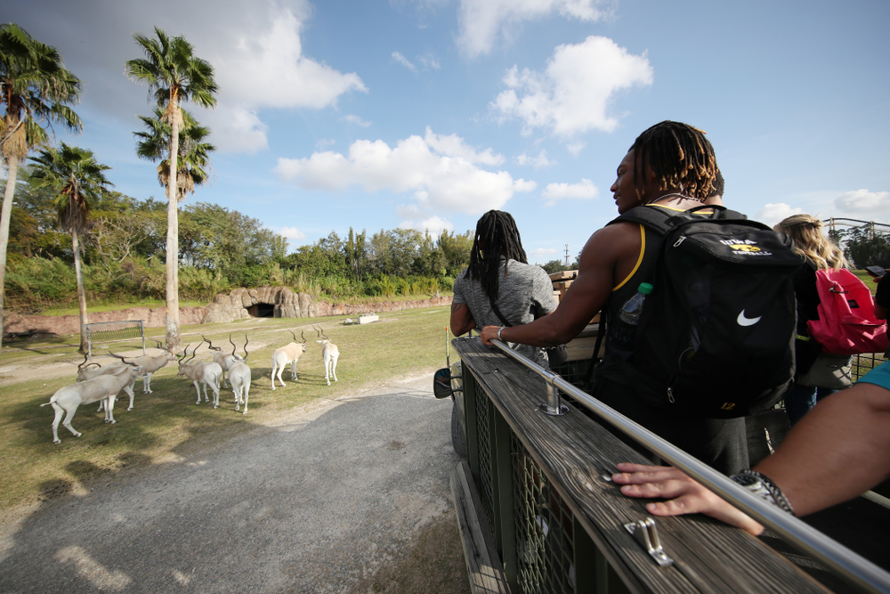 Iowa Hawkeyes wide receiver Brandon Smith (12) rides out to feed the giraffes during an Outback Bowl team event Saturday, December 29, 2018 at Busch Gardens in Tampa, FL. (Brian Ray/hawkeyesports.com)