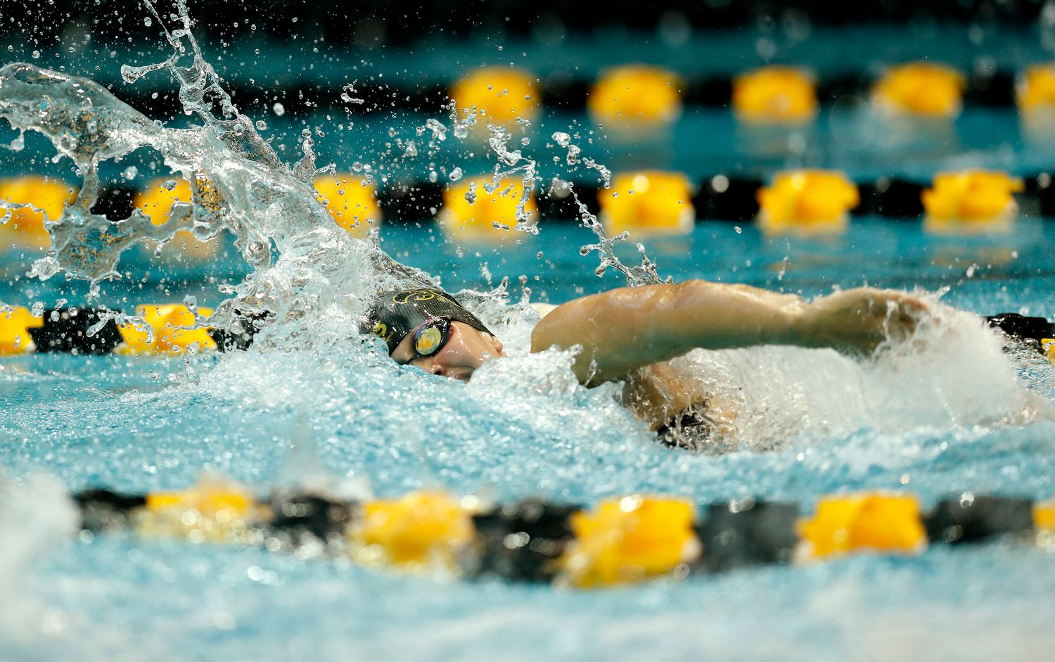 Here are some helpful navigation tips and features. Iowa Swim & Dive - History - University of Iowa Athletics