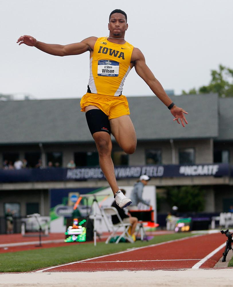 O'Shea Wilson -- Long Jump