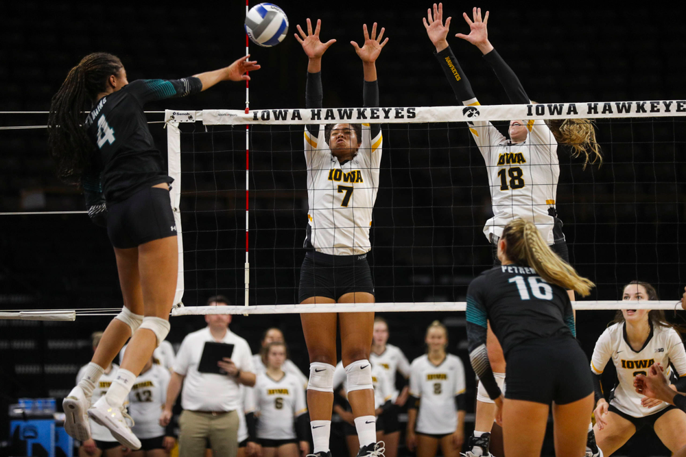 Iowa Hawkeyes setter Brie Orr (7) and Iowa Hawkeyes middle blocker Hannah Clayton (18) against Coastal Carolina Friday, September 20, 2019 at Carver-Hawkeye Arena. (Lily Smith/hawkeyesports.com)