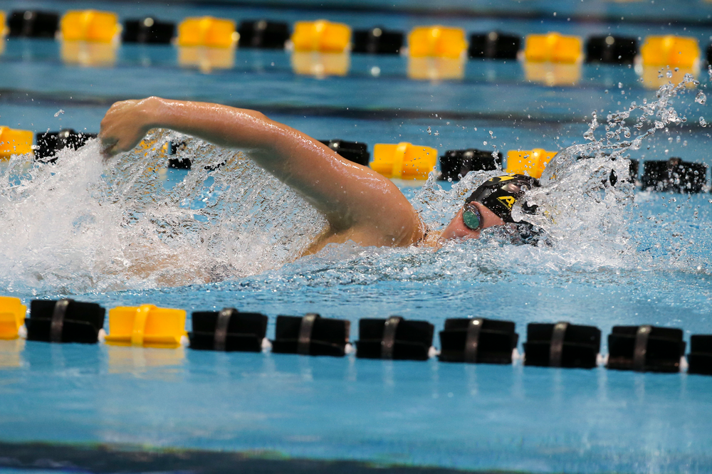 Iowa's Payton Lange during Iowa swim and dive vs Minnesota on Saturday, October 26, 2019 at the Campus Wellness and Recreation Center. (Lily Smith/hawkeyesports.com)