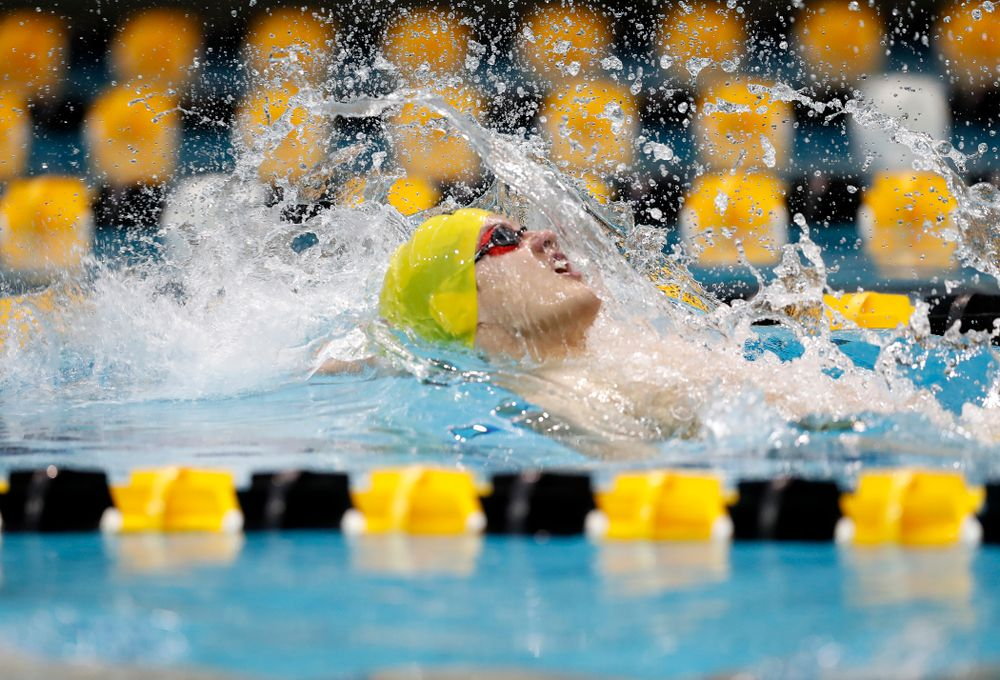 Anze Fers Erzen swims the backstroke leg of the 200 yard medley relay during the Black and Gold Intrasquad Saturday, September 29, 2018 at the Campus Recreation and Wellness Center. (Brian Ray/hawkeyesports.com)