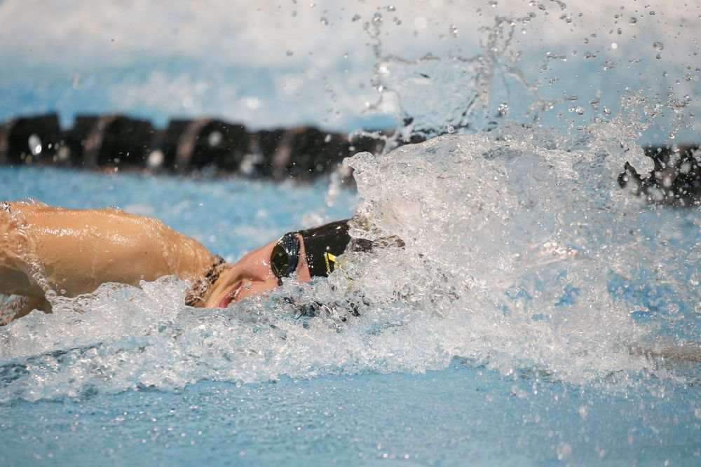 Iowa's Hannah Burvill swims the 100-yard freestyle during the Iowa swimming and diving meet vs Notre Dame and Illinois on Saturday, January 11, 2020 at the Campus Recreation and Wellness Center. (Lily Smith/hawkeyesports.com)