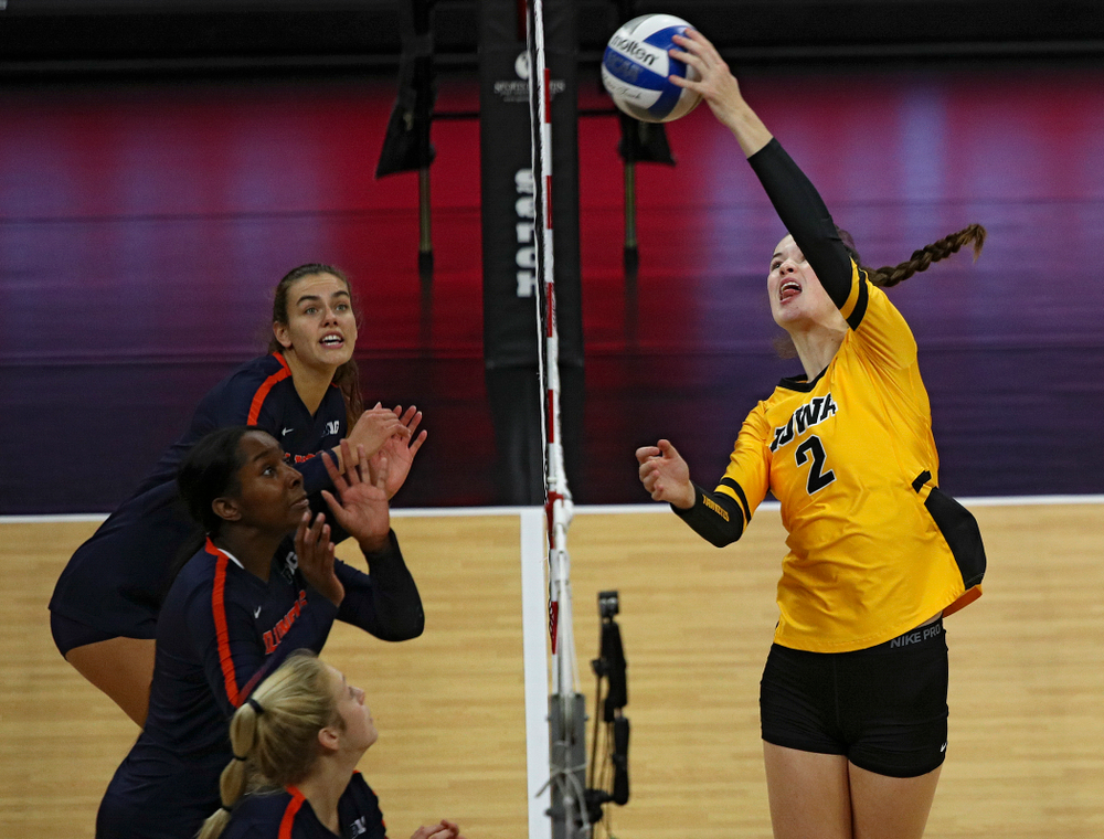 Iowa's Courtney Buzzerio (2) gets a kill during the second set of their match against Illinois at Carver-Hawkeye Arena in Iowa City on Wednesday, Nov 6, 2019. (Stephen Mally/hawkeyesports.com)