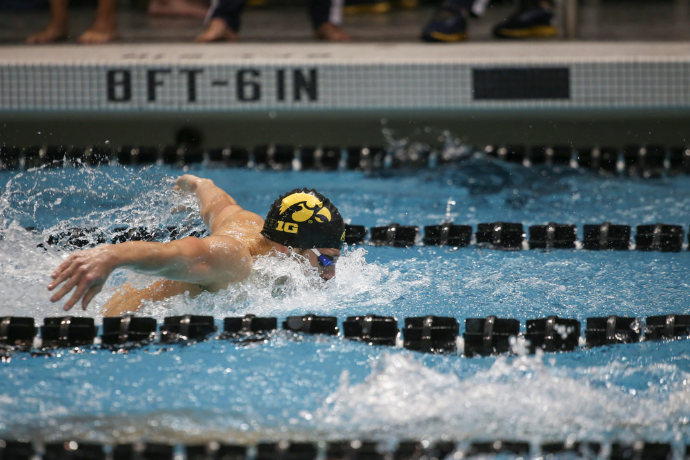 Iowa's Jackson Allman swims the 200-yard butterfly during the Iowa swimming and diving meet vs Notre Dame and Illinois on Saturday, January 11, 2020 at the Campus Recreation and Wellness Center. (Lily Smith/hawkeyesports.com)