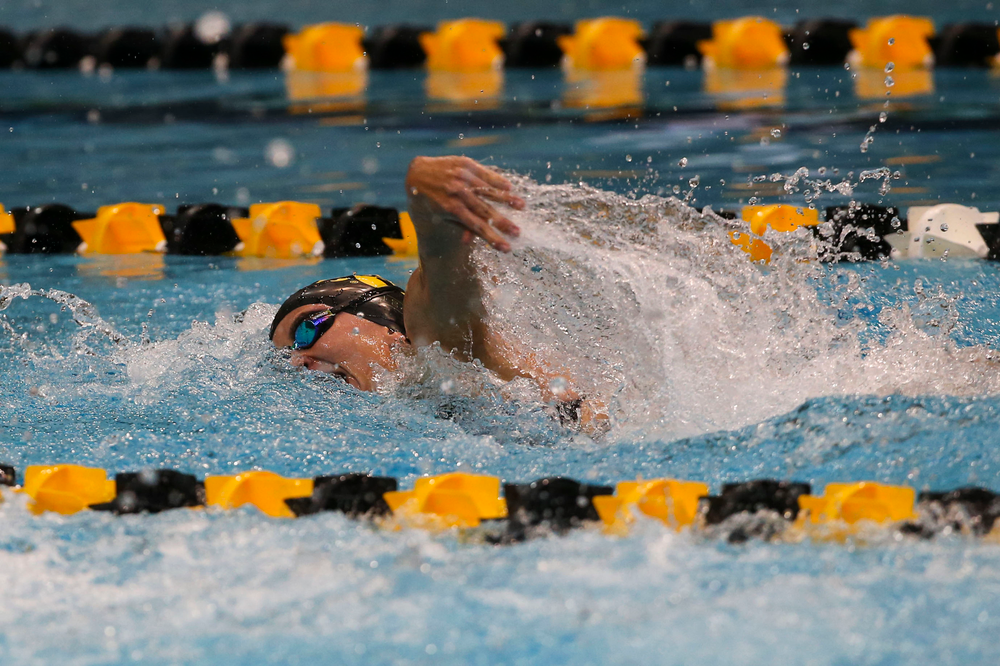 Iowa's Meghan Hackett during Iowa swim and dive vs Minnesota on Saturday, October 26, 2019 at the Campus Wellness and Recreation Center. (Lily Smith/hawkeyesports.com)