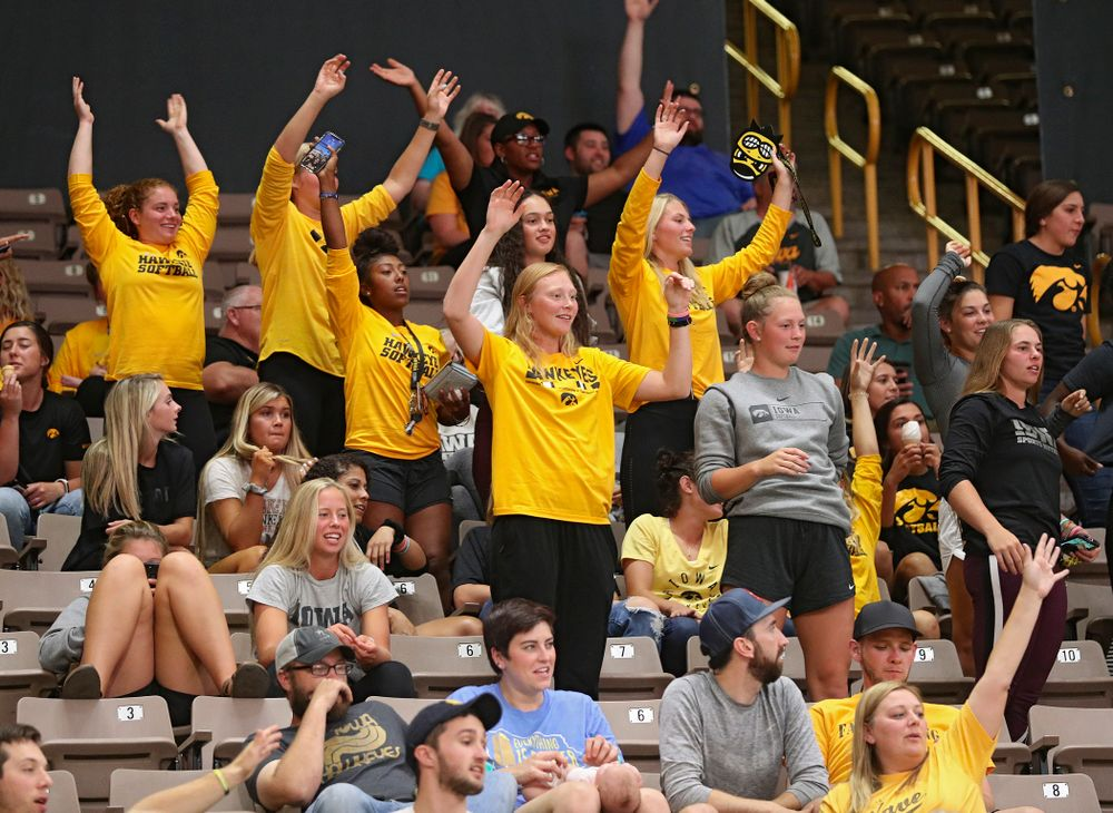 Iowa softball teammates cheer during the third set of their Big Ten/Pac-12 Challenge match against Colorado at Carver-Hawkeye Arena in Iowa City on Friday, Sep 6, 2019. (Stephen Mally/hawkeyesports.com)