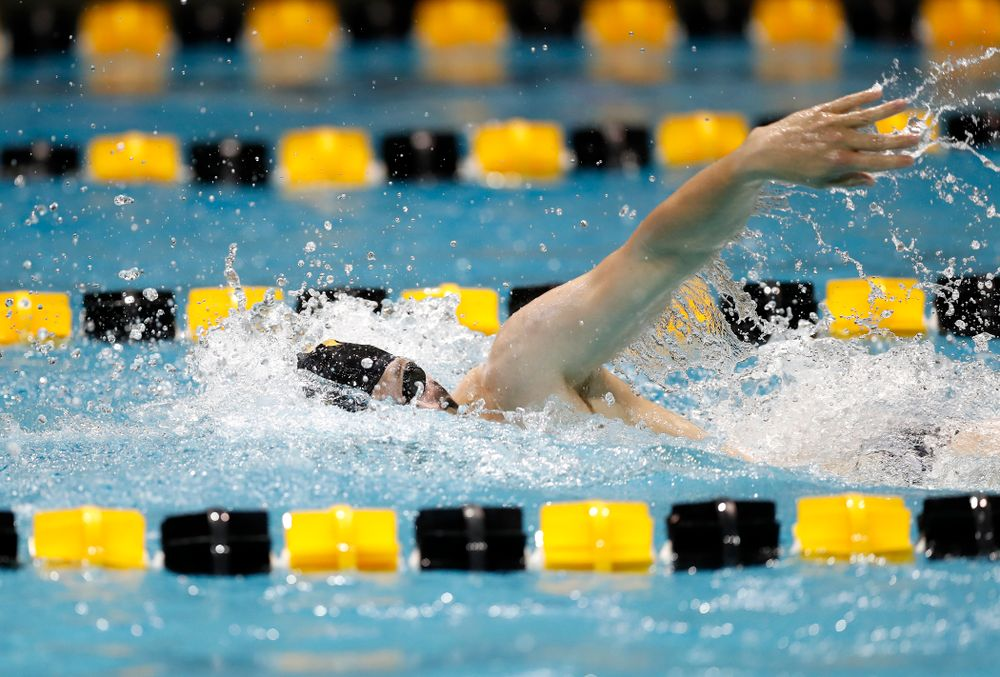Ben Colin swims the 200 yard freestyle during the Black and Gold Intrasquad Saturday, September 29, 2018 at the Campus Recreation and Wellness Center. (Brian Ray/hawkeyesports.com)